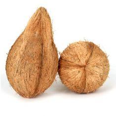 coconut with jatta 1 pc