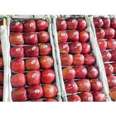 kashmiri apple 1kg